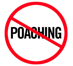 Athlete Poaching: Should You Be Worried?